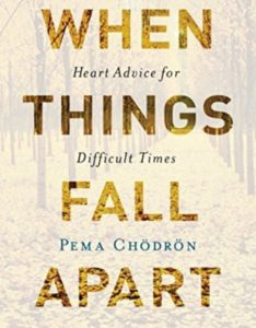 WHEN THINGS FALL APART – Heart Advice for Difficult Times
