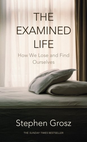 THE EXAMINED LIFE Stephen Grosz